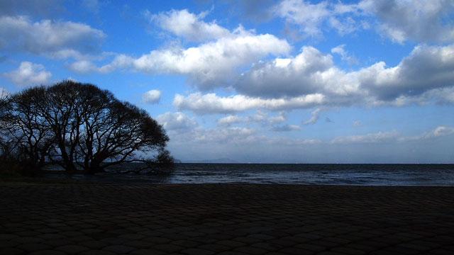 新旭風車村前の琵琶湖